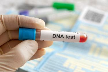 新型出生前診断(NIPT)でDNA鑑定はできる?染色体の仕組みなども解説します